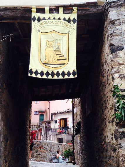 Bilocale San Casciano dei Bagni  7