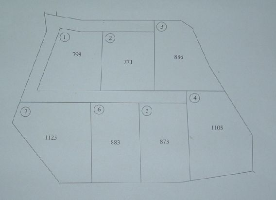 Terreno vendita SELLIA MARINA (CZ) - 99 LOCALI - 7000 MQ