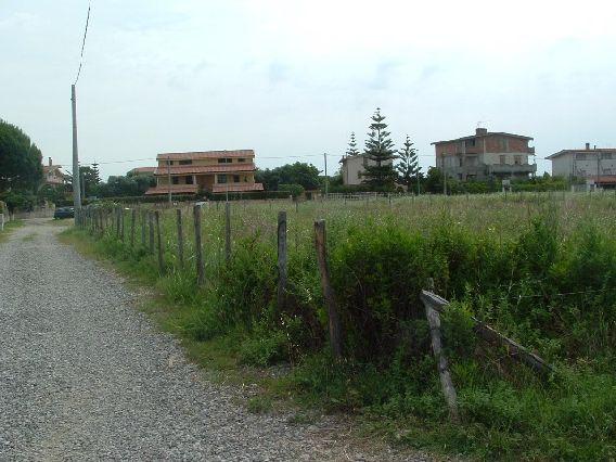 Terreno vendita SELLIA MARINA (CZ) - 99 LOCALI - 2000 MQ